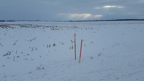 Survey markers near the site of Foxconn's factory.