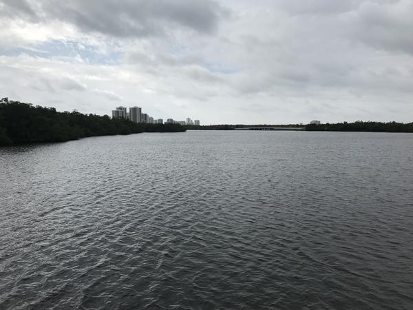 The Lake Worth Lagoon, as seen from a boardwalk at John D. MacArthur Beach State Park.