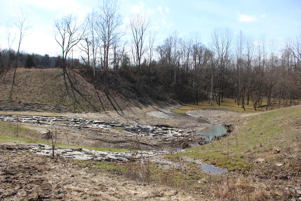 A man-made containment dam used to stretch across here. It was built to keep oil in the creek from flowing into the pond.