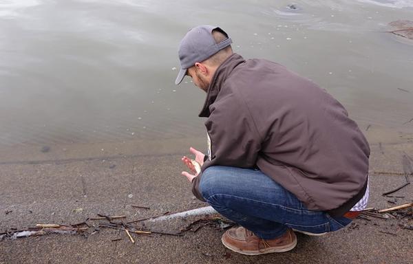 <p>USFWS biologist Evan Childress releases a sucker into Upper Klamath Lake.</p>