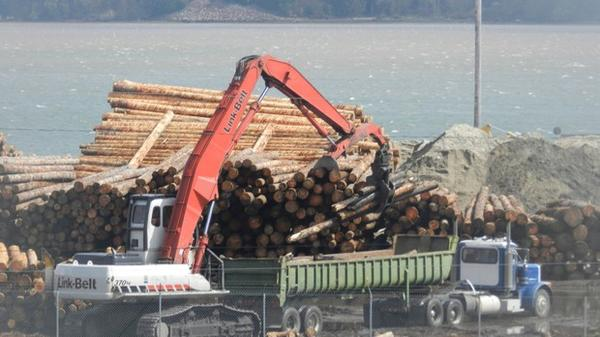 <p>Logs are prepared for export in Coos Bay, Or. Sequesteration may result in a 10 percent cut to aid payments to Coos county and 17 other Western Oregon counties.</p>
