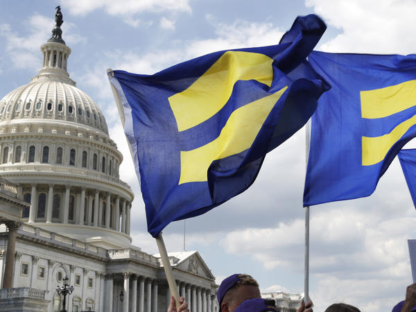 """""""Equality flags"""" are on display during a Capitol Hill event in Washington, D.C., supporting of transgender members of the military."""