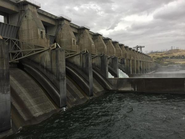 <p>Fish advocates say sending water through spill bays is the best way to ensure fish survival through dams in the Columbia and Snake rivers.</p>