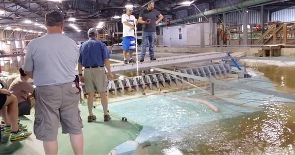 <p>Managers with Northwest fish and wildlife agencies and tribes test spill patterns on a miniature version of The Dalles Dam in Vicksburg, Mississippi.</p>