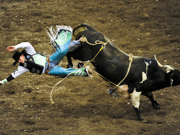 Brian Herman is thrown off the bull Bad Medicine during championship day of the 2009 Professional Bull Riders Built Ford Tough Invitational at Madison Square Garden in New York City.