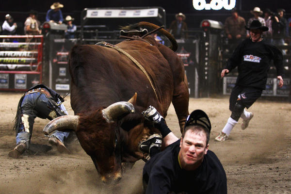 Monster Mash chases a bullfighter during the 2011 PBR Australian Cup Series Final at Acer Arena in Sydney.