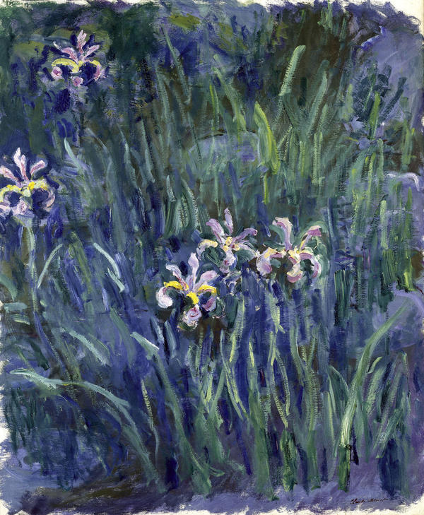 Claude Monet's <em>Irises</em> painting is making its U.S. debut at the New York Botanical Garden exhibit.