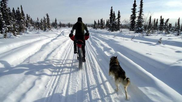 Bike shop owner Kevin Breitenbach rides a fat bike in the White Mountains National Recreation Area in Alaska in March.