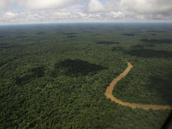 An aerial view of the Yasuni National Park, in Ecuador's northeastern jungle.