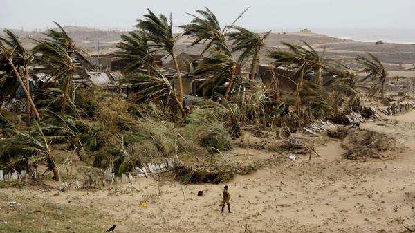 An Indian woman returns to the cyclone-hit Arjipalli village on the Bay of Bengal coast in Ganjam district, Orissa state, India, Sunday. Officials say 17 deaths resulted from the powerful storm that left a trail of destroyed houses.