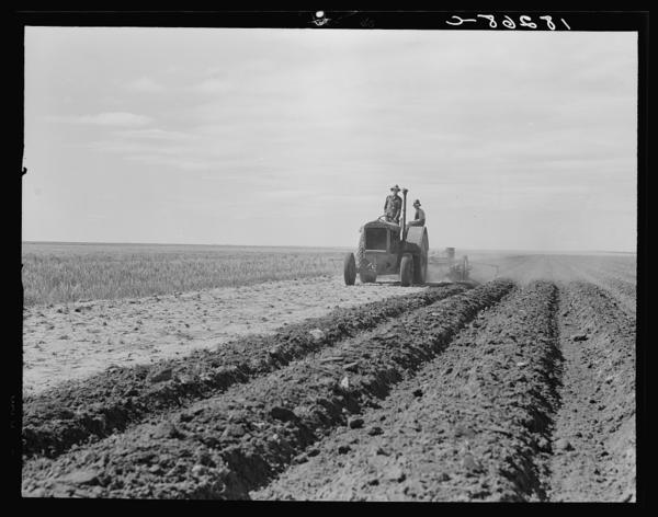 """Dust Bowl farmer drives a tractor with his son near Cland, N.M. (1938). Steinbeck writes: """"The tractors came over the roads and into the fields, great crawlers moving like insects, having the incredible strength of insects ... monsters raising the dust and sticking their snouts into it, straight down the country ... through fences, through dooryards, in and out of gullies in straight lines."""""""