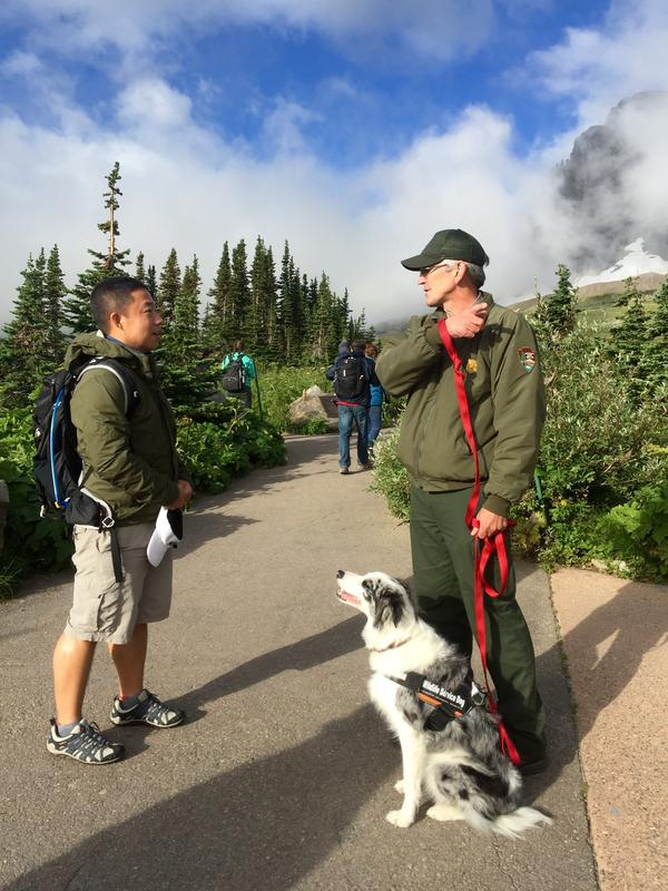 Part of Gracie and Ranger Mark Biel's (right) job is teaching park visitors how to safely view wildlife along popular trails, like the Hidden Lake Overlook trail from Logan Pass.