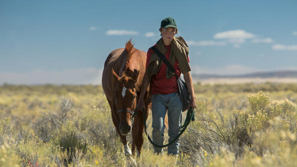 Andrew Haigh directs a story about a boy (Charlie Plummer) who befriends a horse marked for slaughter.