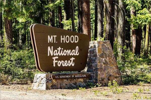 File photo. Visitors to national forests in in the Northwest spend nearly $740 million each year.