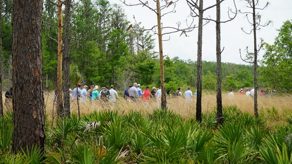 Guests, sponsors and other VIPs took a mile-long hike to Lake Russell.