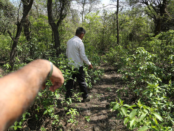 Men walk near the site where the body of an 8-year-old girl, who was raped and murdered, was found.