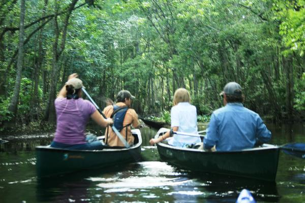 The Florida Wildlife Corridor team paddled on Reedy Creek, north of Interstate 4.