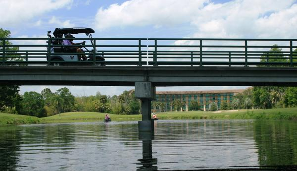The wild Reedy Creek becomes a Disney golf course water hazard