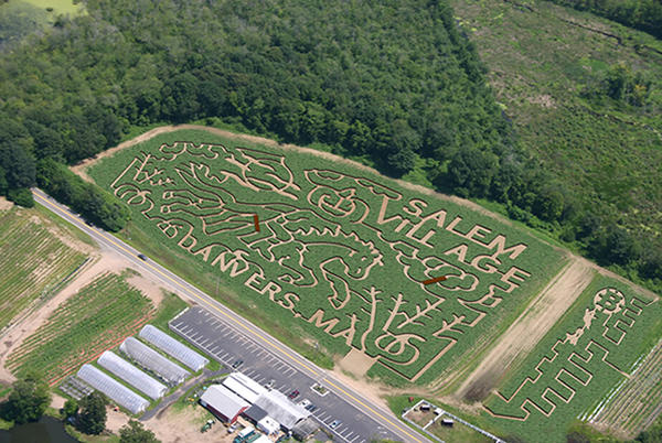 """<p>The family got lost in this corn maze on Connors Farm in Danvers, Mass., but were eventually found close to the exit. The maze was shaped in the theme of the """"Headless Horseman."""" </p>"""