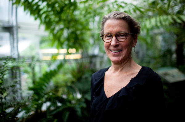 <p>Sarah Mathews, a botanist at Harvard University, says a changing climate on the planet about 12 million years ago led to a burst of new plant species, including cacti and agave.</p>