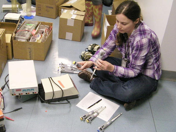 <p>Amanda Nottke, who earned her Ph.D. from Harvard, sorts through used micropipettes that will be shipped to overseas science labs.</p>