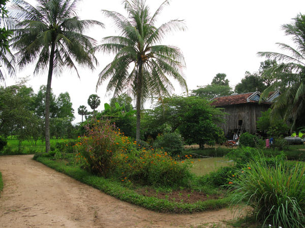 <p>Peou Nam's traditional Khmer farmhouse on stilts in the countryside of Kampot province. Peou settled there after surviving the Khmer Rouge's attempts to execute him. He remarried and has six children with his second wife.</p>