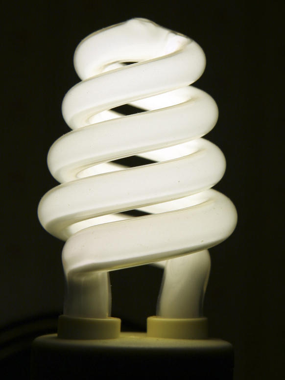 """The <a href=""""http://www.lightbulboptions.org/files/TabbedPDF.pdf"""">National Electrical Manufacturers Association</a> says compact fluorescent bulbs like this are significantly more efficient than incandescent bulbs."""