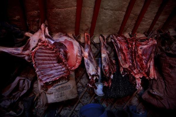 A freshly slaughtered sheep carcass hangs inside the family's <i>ger</i>, or yurt, to dry. Meat — usually mutton — and noodles are the main foods for most Mongolians.