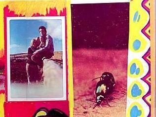 Copulating beetles on the back cover to Paul and Linda McCartney's 'Ram'
