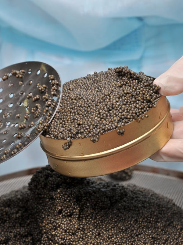 Caviar — an expensive delicacy that's not much to look at.