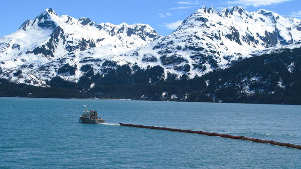 The first step in responding to oil spills is to try to ring the oil with floating booms.