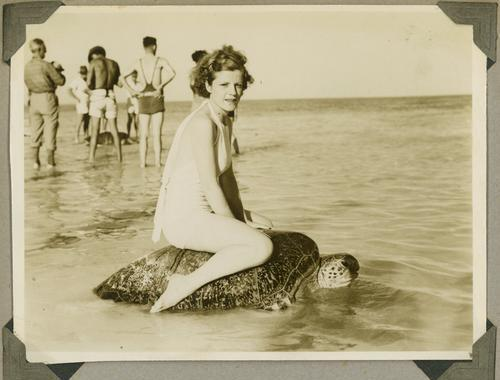Riding a sea turtle, OK? (Mon Repos beach, Australia, circa 1930)