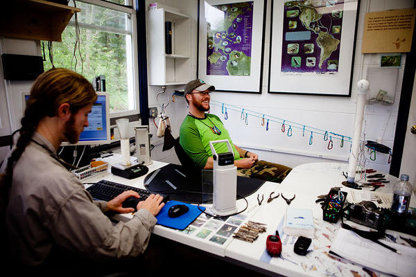 DeGroote and Blaine Cernes, a banding assistant, enter the data they've collected into a database that will help monitor how well the avian populations are doing in the wild.