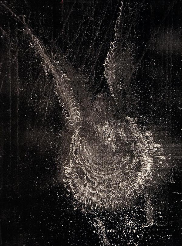 An image of a bird strike ghost print.