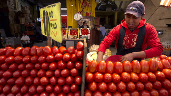 A worker separates tomatoes at a market in Mexico City. The Commerce Department says it might act to end a 16-year-old trade deal governing fresh Mexican tomatoes sold in the U.S.