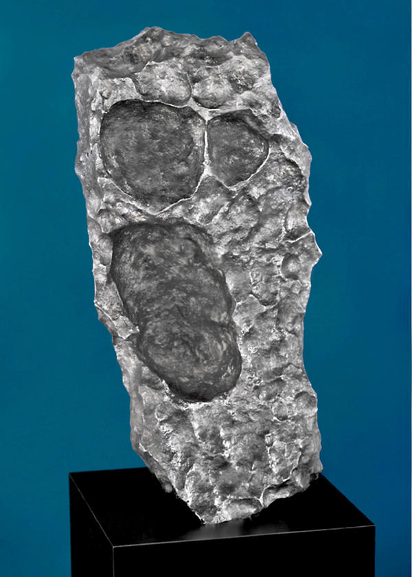 <strong>The Scream?</strong> Meteorites can take oddly familiar shapes. This one has echoes of Edvard Munch's famous painting. The Gibeon meteorite chunk was found in Namibia. Estimated price: $175,000-$225,000.