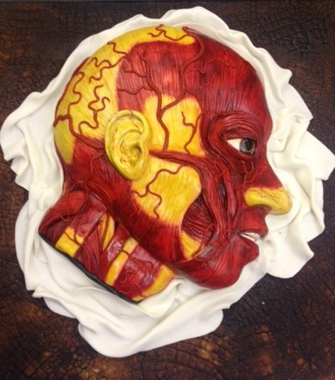 "An Anatomical Model: This sponge cake with marzipan icing by the <a href=""http://www.conjurerskitchen.com/"">Conjurer's Kitchen</a>, a specialty baker, depict the art of wax modeling called ""moulage"" first developed during the Renaissance."
