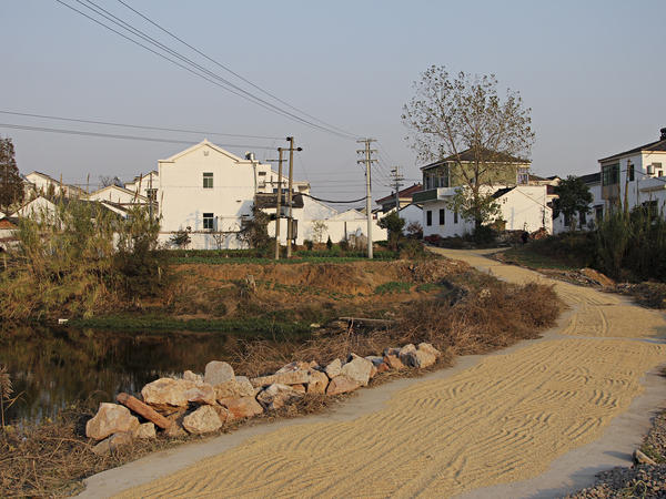 Dongjianggai, a farming village, lies about 200 miles northwest of Shanghai.