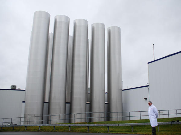 Most of the gleaming steel tanks outside Fage's yogurt factory hold milk. One, however, holds the yogurt byproduct whey.