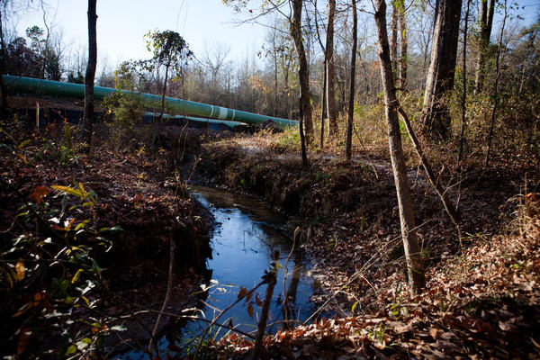 The Keystone XL pipeline now cuts through Daniel's property and the crystal-clear stream, which Daniel used to drink from, is cloudy and murky.