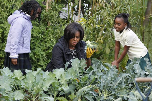 <strong>In the garden:</strong> Michelle holds up broccoli as she participates in the White House Kitchen Garden Fall Harvest with students on the South Lawn of the White House on Oct. 20, 2010.