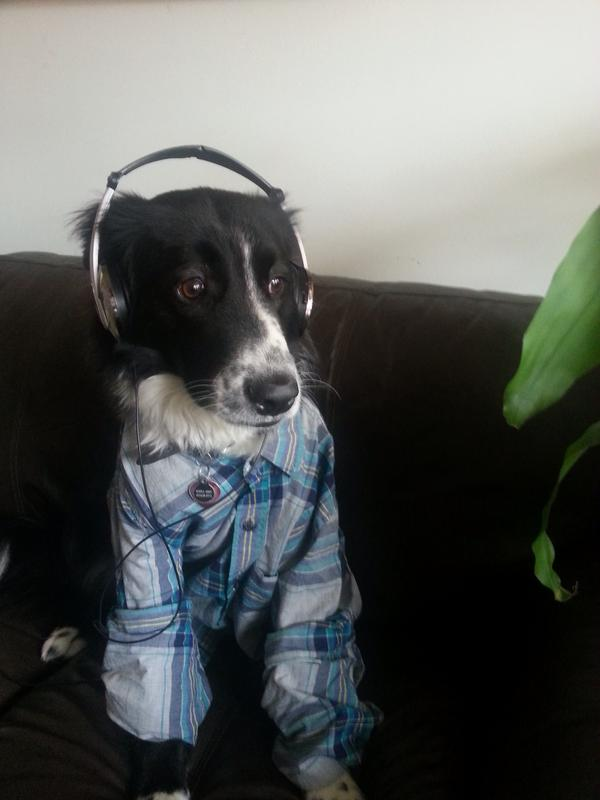 """""""Gus loves listening to thought-provoking shows (and fly jams) on WUNC out of Chapel Hill, NC."""""""