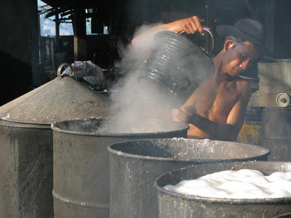 Soybeans are then boiled in industrial-size barrels. In Kebun Jeruk, a village in west Jakarta, Indonesia, a cooperative of more than 1,400 local households produces nearly 2 tons of tempeh daily.
