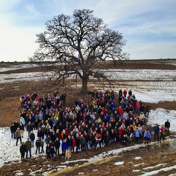 On the last day of the project, Mark Hirsch invited his Facebook followers to visit the tree and have their portrait taken. Close to 300 people showed up, along with 12 dogs.