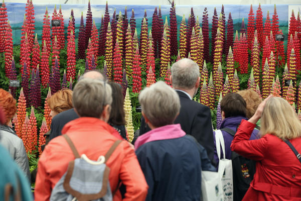 Less famous visitors take in a display in the Great Pavilion on Tuesday, the event's opening day.