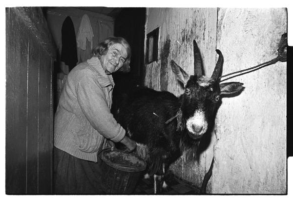 A 100-year-old woman from Kilcoo, County Down, Northern Ireland, milking her goat in the hallway of her home.