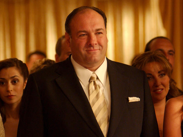 James Gandolfini played Tony Soprano in the hit TV series <em>The Sopranos</em>. Gandolfini died of cardiac arrest in Italy this week at age 51.