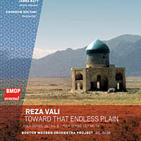 Reza Vali's new album, <em>Toward That Endless Plain</em>.