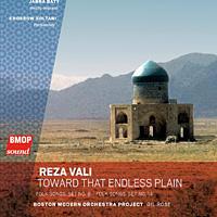 Reza Vali's new album, <em>Toward That Endless Plain</em>.