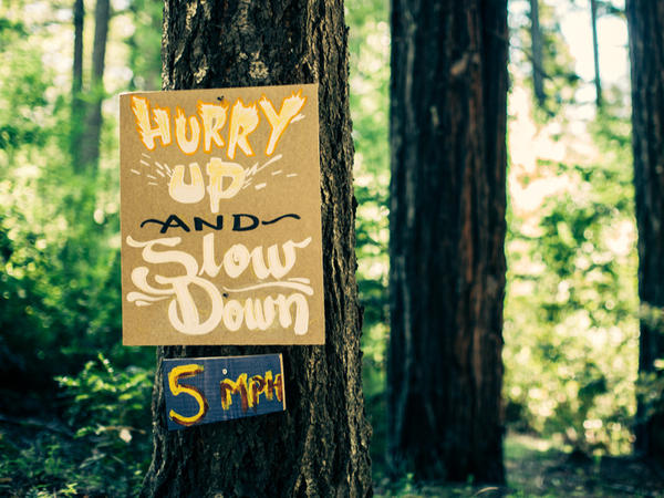 Camp Grounded is located in Northern California.